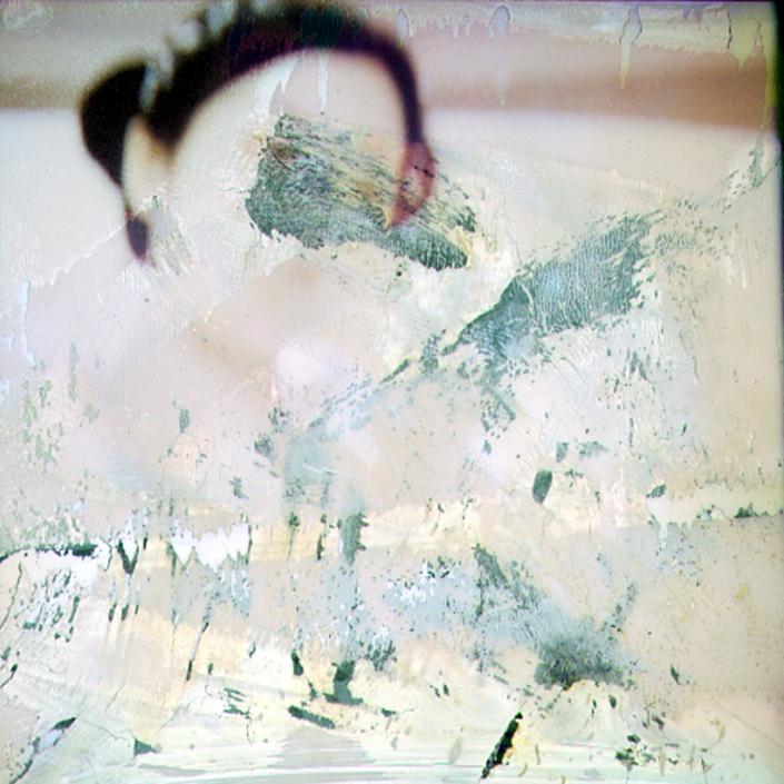 Luigi Viscido - Polaroid: Japan