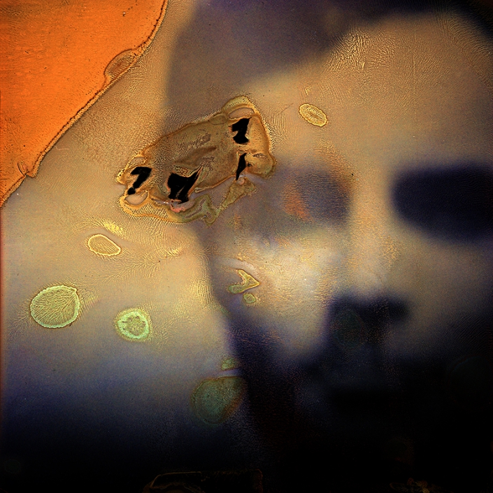 Luigi Viscido - Polaroid: Modigliani